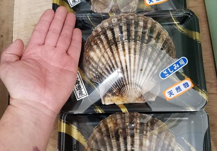 でっかいホタテ貝、生桜海老、太刀魚入荷しています!
